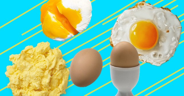 Why eggs are the greatest food – 500 words (Tom Evans)