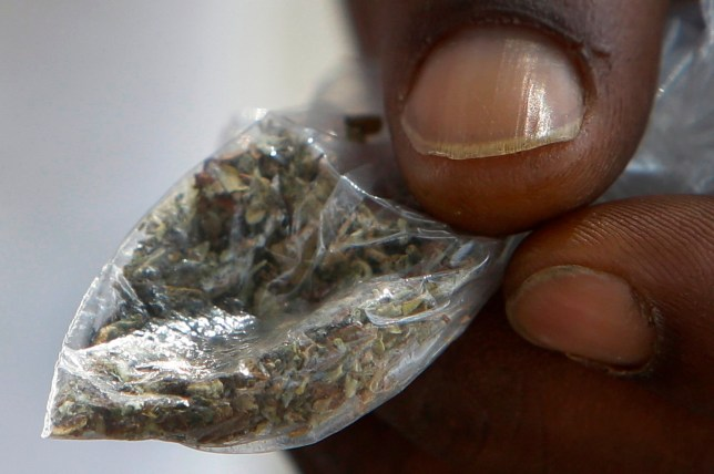 Three dead after smoking fake weed laced with rat poison | Metro News