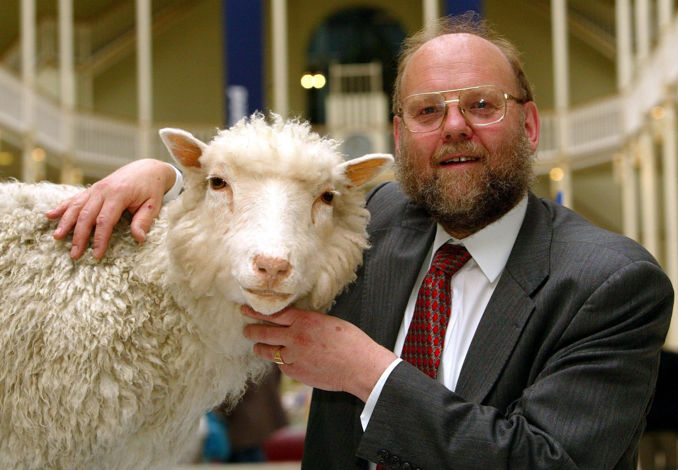 """Undated file photo of Professor Ian Wilmut of the Roslin Institute with his old friend, """"Dolly"""", the world s first cloned sheep."""