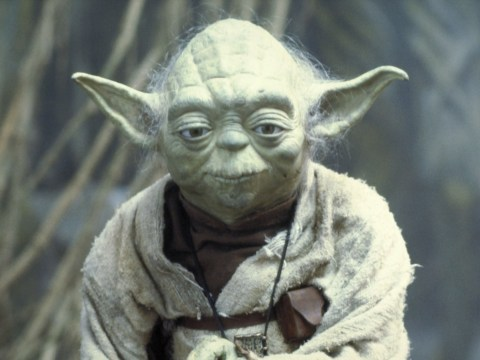 Yoda set to make comeback in Star Wars: Episode IX to 'acknowledge Rey's success as a Jedi'