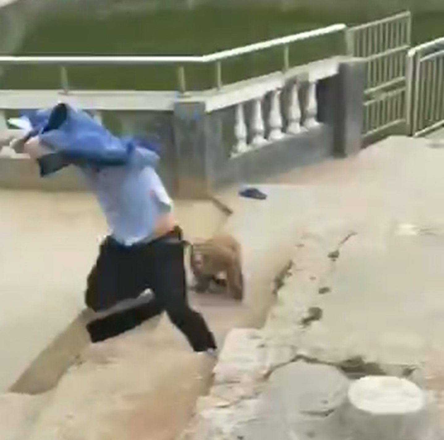 "Pic shows: The monkey starts to chase the tourist after the prank. This is the moment a prankster tourist is punished by instant karma when he tries to push a monkey into a pond but it turns around and attacks him, scratching his hand and face. The unnamed man was visiting the Xitian Temple in Dehua County in East China???s Fujian Province when he tried to push one of the resident monkeys into a pond for a laugh. Footage taken by another visitor shows the man creeping up on the unsuspecting animal, which is perched on a metal railing next to the body of water. The man suddenly shoves the monkey, which cries as it falls over the railing - but a second later the primate leaps back up again at shocking speed. The monkey then chases the man as other visitors laugh. The video shows him running into the temple where he believed the monkey would not give chase - but it does. The monkey???s clan mate rushes to its rescue and enters the building to attack the man. ""The monkeys scratched the tourist,"" a temple employee said, adding: ""There were other people inside, and they helped drive the monkeys away."" The tourist later shared a photo of his bloodied hand and face. (ends)"