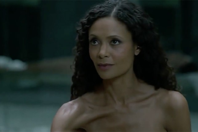 Westworlds Thandie Newton Wanted To Cry After Filming -6923