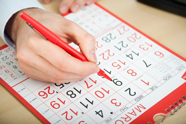 How many working days are there in a year and how to work it