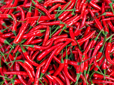 10 things anyone obsessed with spicy food will know