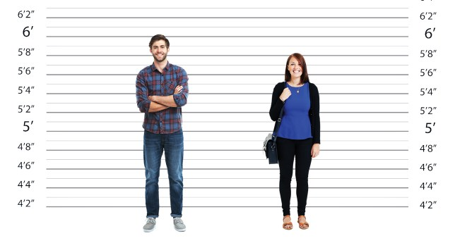 The ideal heights for men and women have been revealed
