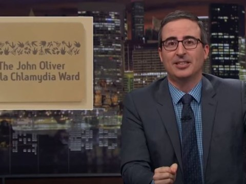 Russell Crowe kindly has koala chlamydia centre named after Last Week Tonight's John Oliver