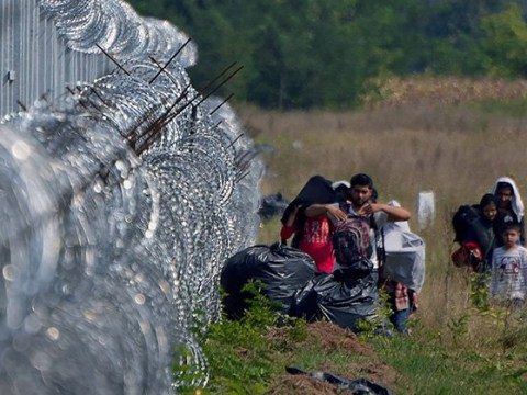 Massive border fence in Hungary is 'protecting' people, mayor says