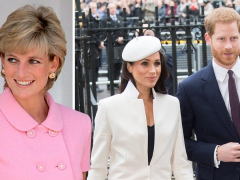 Prince Harry and Meghan Markle reveal key role for Diana's siblings at royal wedding