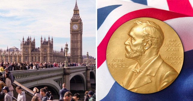The UK will become top Nobel Prize-winning nation after Brexit, German academics claim