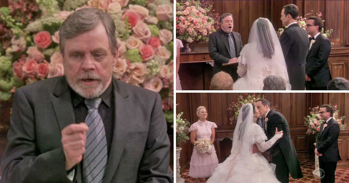 Mark Hamill officiates Sheldon and Amy's wedding in Big Bang Theory season finale