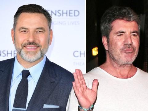 David Walliams 'crosses a line' as he claims Simon Cowell slept with Amanda Holden
