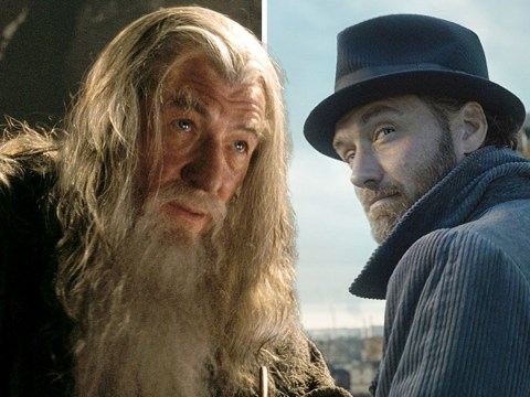 Lord Of The Rings star Ian McKellen has slammed Fantastic Beasts for 'burying' Dumbledore's sexuality