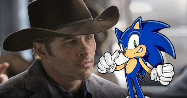 Westworld S James Marsden Cast In Live Action Sonic The Hedgehog