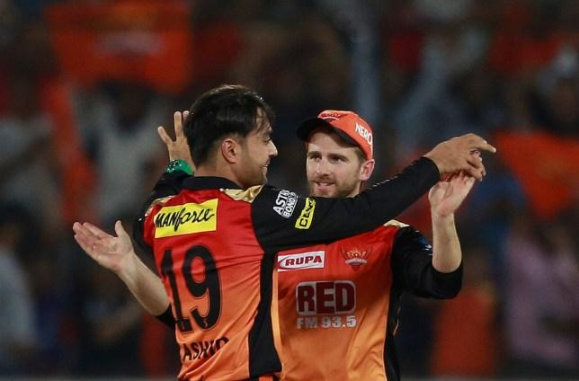 Sunrisers Hyderabad bowler Rashid Khan, left, celebrates the wicket of Delhi Daredevils' Prithvi Shaw with their captain Kane Williamson during VIVO IPL cricket T20 match in Hyderabad, India, Saturday, May 5, 2018. (AP Photo/Mahesh Kumar A.)