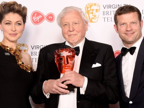 Blue Planet II wins Bafta TV award for the heartbreaking moment a mother pilot whale's calf was killed by plastic pollution