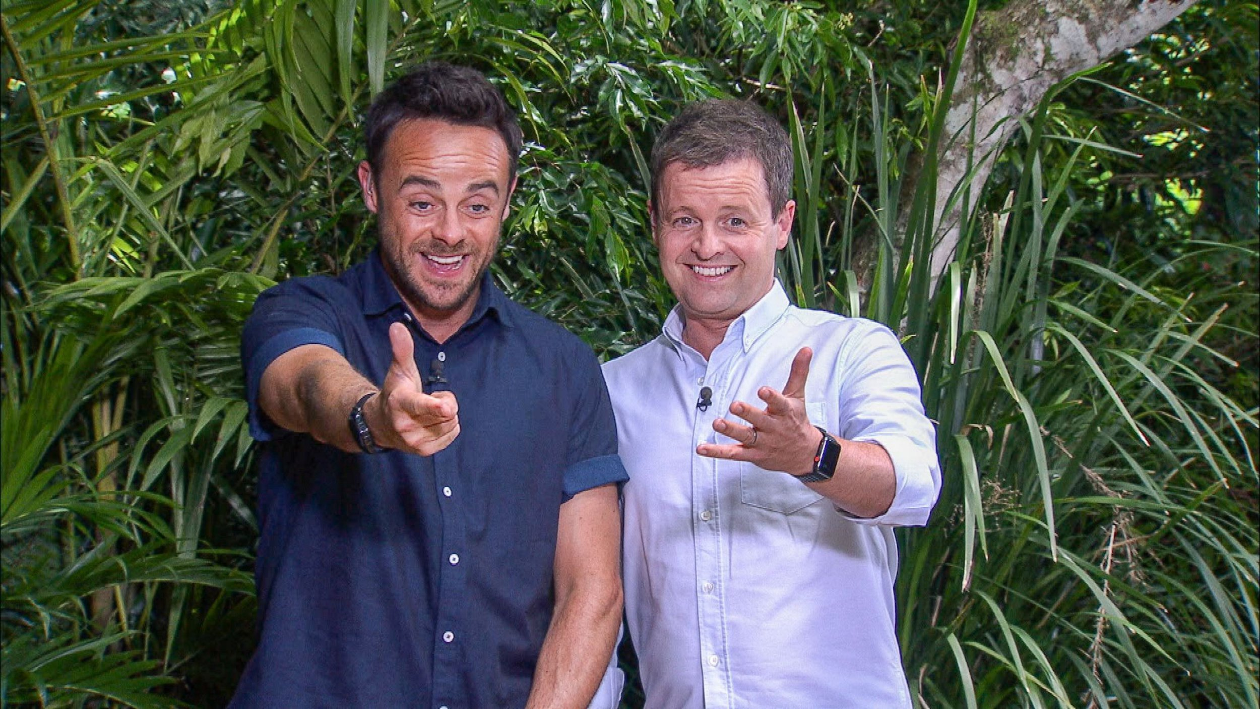 Editorial Use Only. No Merchandising Mandatory Credit: Photo by REX/Shutterstock (9262761ah) Bushtucker Trial: Tutankha-Doom - Anthony McPartlin and Declan Donnelly 'I'm a Celebrity... Get Me Out of Here!' TV Show, Series 17, Australia - 06 Dec 2017