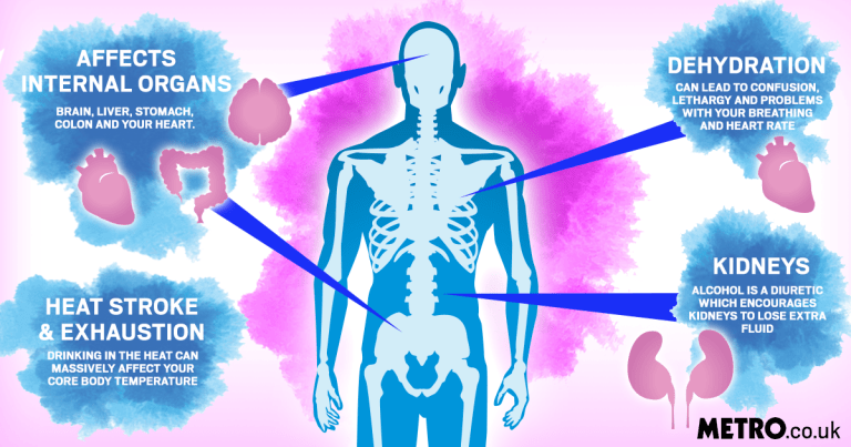 an infographic showing what happens to your body drinking alcohol in hot weather
