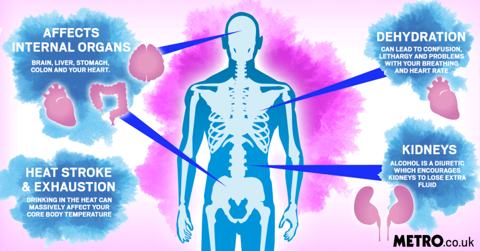 This is what happens to your body when you drink alcohol in