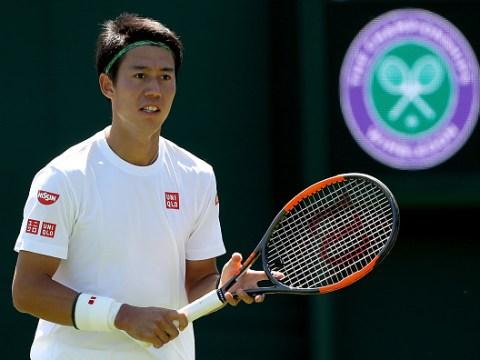 Kei Nishikori backs Marin Cilic and Grigor Dimitrov to rival Roger Federer and Rafael Nadal at Wimbledon
