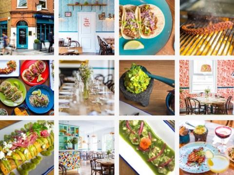 Bar Fox: A hidden rum terrace, London's best tacos and a detox-retox yoga vodka brunch