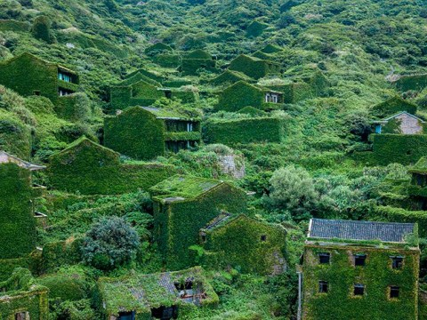 Eerie ghost town shows how quickly nature takes over when humans leave