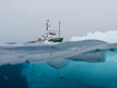 Antarctic no longer 'pristine wilderness' after plastic pollution is found