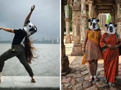 Is it safer to be a cow or a woman in India?