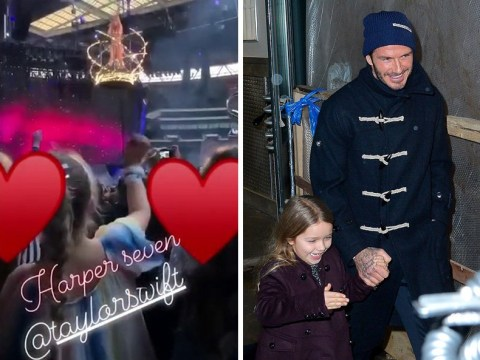 David Beckham takes daughter Harper to see Taylor Swift in London and it's adorable