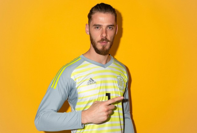 KRASNODAR, RUSSIA - JUNE 08: David de Gea of Spain poses for a portrait during the official FIFA World Cup 2018 portrait session at FC Krasnodar Academy on June 8, 2018 in Krasnodar, Russia. (Photo by Mike Hewitt - FIFA/FIFA via Getty Images)
