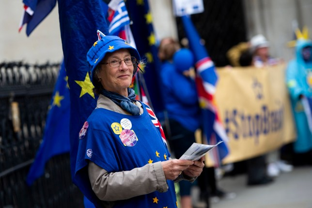 epa06802079 Anti-Brexit campaigners take part in a protest outside the High Court, London, 12 June 2018. The campaigners have launched a legal bid to challenge the legality of Article 50 in an attempt to halt Britain leaving the European Union. EPA/WILL OLIVER