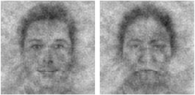 Fig 3. God???s perceived face (left) and anti-face (right) across American Christians. Credit: Joshua Conrad Jackson , Neil Hester, Kurt Gray / University of North Carolina Copyright: ?? 2018 Jackson et al. This is an open access article distributed under the terms of the Creative Commons Attribution License, which permits unrestricted use, distribution, and reproduction in any medium, provided the original author and source are credited.