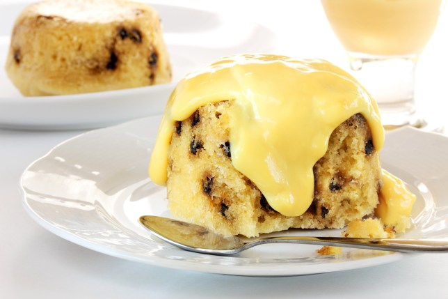 Spotted dick pudding with custard; Shutterstock ID 204338851
