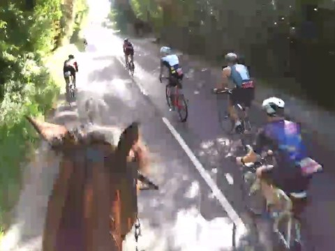 Cyclists spook horse with 'disgusting' overtake manoeuvre at speed
