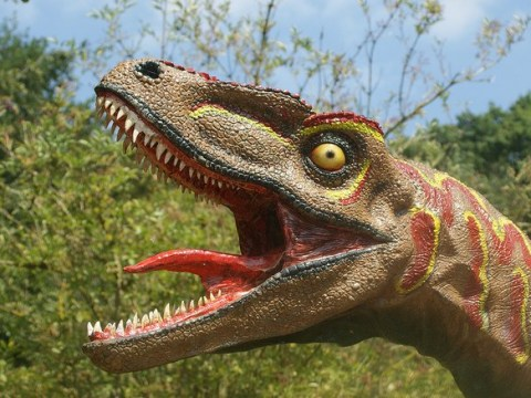 The fearsome T-Rex definitely didn't kiss with tongues, scientists discover