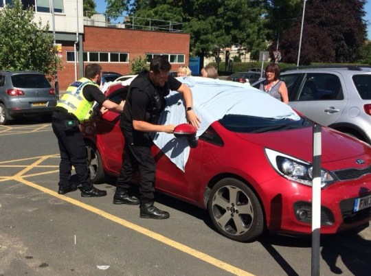Picture of police rescuing a dog in 50C heat TRIANGLE NEWS 0203 176 5581 // contact@trianglenews.co.uk By Eleanor Sharples SELFISH pet owners are facing prosecution after two dogs were saved from the brink of death after being left in a car in 50C heat. Police smashed through a car window to rescue the two animals after they were spotted panting in the vehicle in the car park at York Hospital. Monday was the hottest day of the year so far, with temperatures spiking at almost 30C in London.