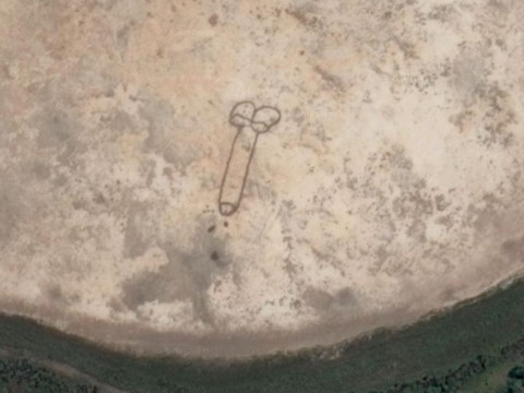 A penis so big it can be seen from space has popped up on Google Maps