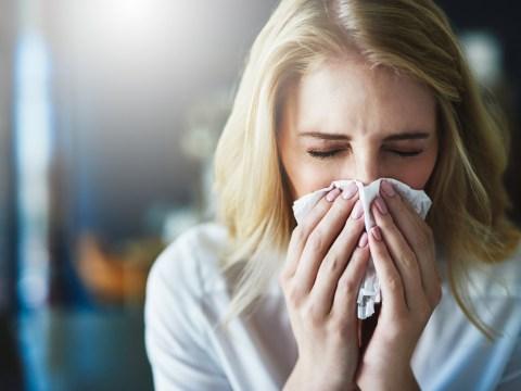 Coronavirus UK: How far does a sneeze travel?