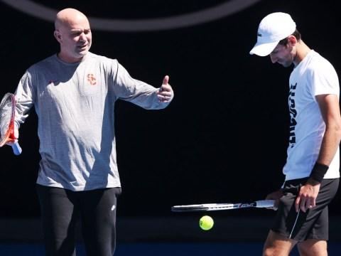 Andre Agassi lifts lid on abrupt Novak Djokovic split