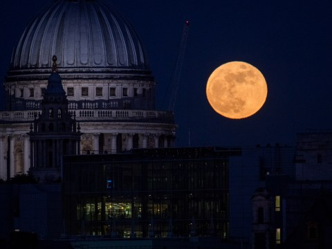 Rare blood moon to rise in sky on Friday during longest eclipse this century