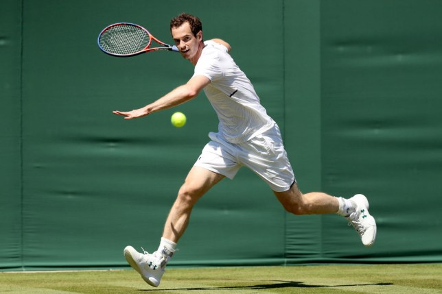 d665f2cf2 Andy Murray faces dramatic rankings slide as he considers schedule change