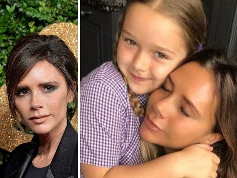 David and Victoria Beckham 'give Harper £7,000 pony for her birthday' and why not?