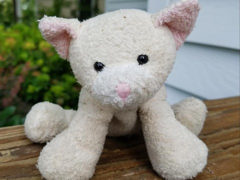 Man launches appeal to reunite lost toy with its rightful owner
