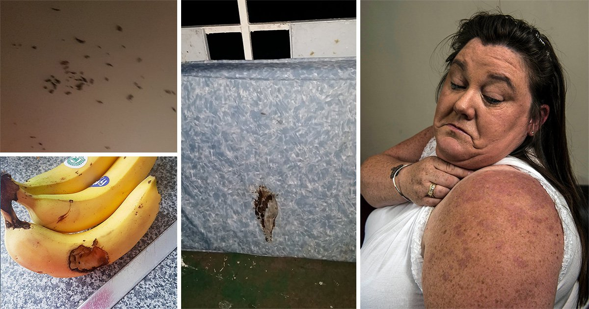 Mum says she was covered in bed bug bites after stay at 'disgusting' holiday park