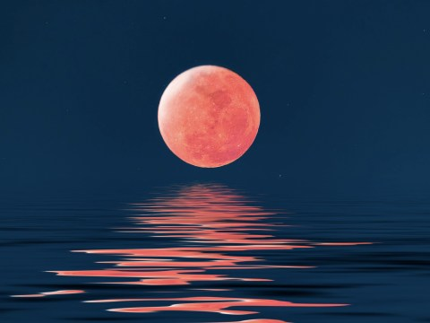 Will the blood moon affect your mood?
