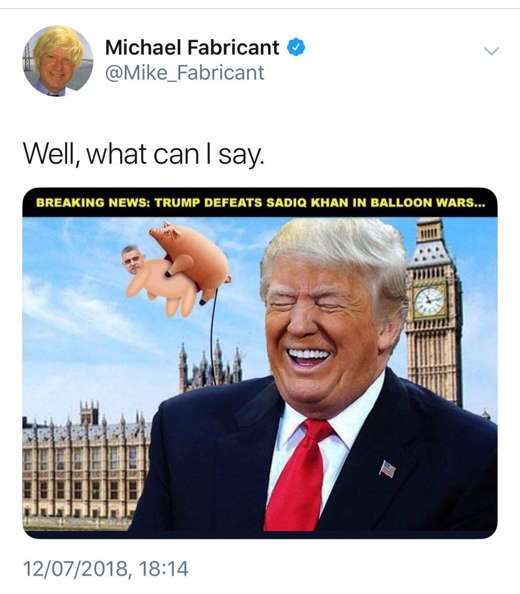 Gross tweet from Michael Fabricant METRO GRAB taken from: https://twitter.com/hopenothate/status/1017479463666405376 Credit: Michael Fabricant/Twitter