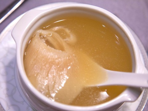 Why are restaurants in the UK still serving shark fin soup?