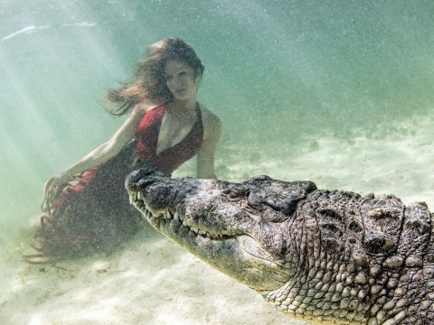 Models manage to pose underwater for photoshoot with crocodiles