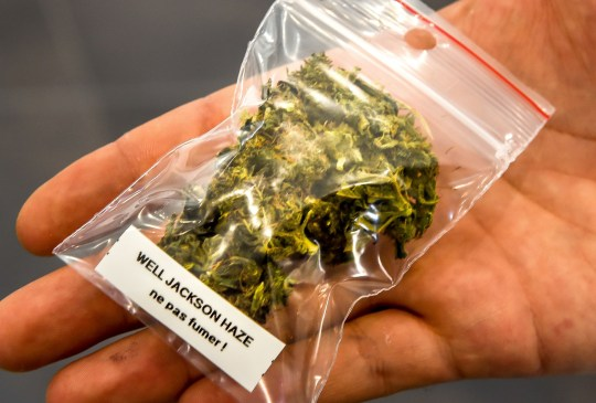 A picture taken on May 30, 2018 shows a small bag containing cannabis in a shop specialised in medical cannabis in Annoeullin, near Lille, northern France. - In Annoeullin, near Lille, a brand new shop sells cannabis-based products, in the middle of a debate on its legal use to relieve pain. Since May 18, this store offers CBD (Cannabidiol). (Photo by PHILIPPE HUGUEN / AFP) (Photo credit should read PHILIPPE HUGUEN/AFP/Getty Images)
