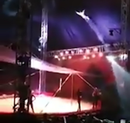 """Pic Shows: The man being shot out of the canon and sent airborne; This is the startling moment a circus performer is blasted out of a cannon and flies through the air but he overshoots the net and reportedly hit a clown. The images were recorded at the American Circus in the Arauco Maipu shopping centre in the Maipu district of the Chilean capital Santiago. In the video, a circus ring can be seen complete with spotlight and a large crowd when a performer comes flying over the back curtain having reportedly been fired from a cannon. The performer, known as ???Hombre Bala??? (Bullet Man) flies through the air but overshoots his landing and crashes to the floor in between two stands packed with spectators. Local media report the performer fell into a clown who was knocked to the ground. The Bullet Man reportedly was reportedly rushed to a local hospital where he was treated for fractures to his jaw and knees whilst the clown was unharmed. The injured performer is reportedly still under observation but in a stable condition. The operator of the cannon took the blame for the incident, telling local media: """"It was a mistake on my part, my apologies especially to the audience. """"I did not disconnect the air-supply hose and the compressor made the air return from the accumulator which then raised the pressure causing a longer distance than what is always programmed."""" American Circus told reporters that their programmed shows will continue as planned."""