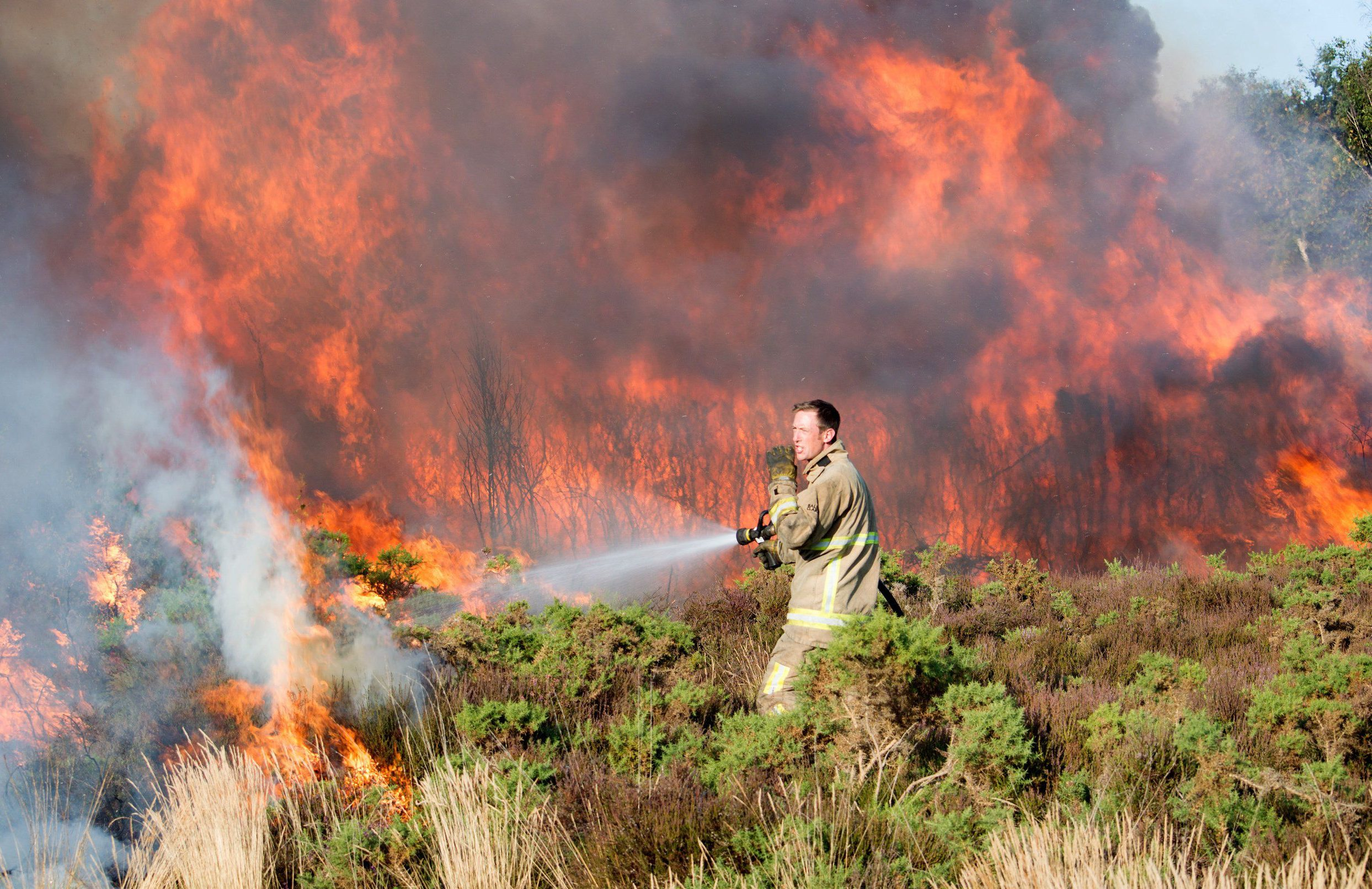 An aggressive grass fire rages 20 feet in the air as a firefighter attempts to tame the blaze. The fire quickly spread and covered an acre of land in only 15 minutes. The cause of the blaze is unknown, but it took place in Hythe near Southampton, Hants, which continues to suffer from the ongoing heatwave. Temperatures have consistently remained in the high twenties - with the soaring heat and dry weather set to continue into August. SEE COPY FOR MORE DETAILS ? Mel Port/Solent News & Photo Agency UK +44 (0) 2380 458800